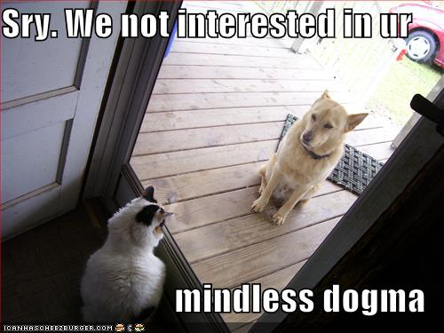 Funny-pictures-cat-greets-dog-at-door.jpg
