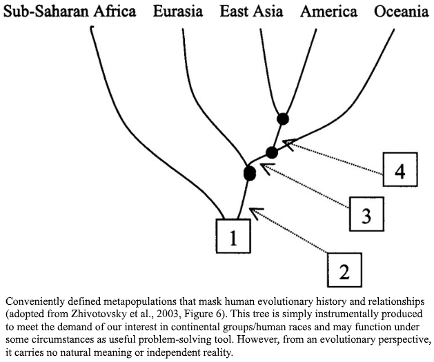 File:Racialist Tree Diagram.png