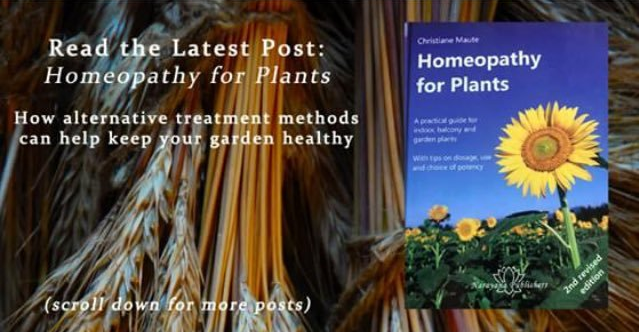 Homeopathy_What_Plants_Crave.png