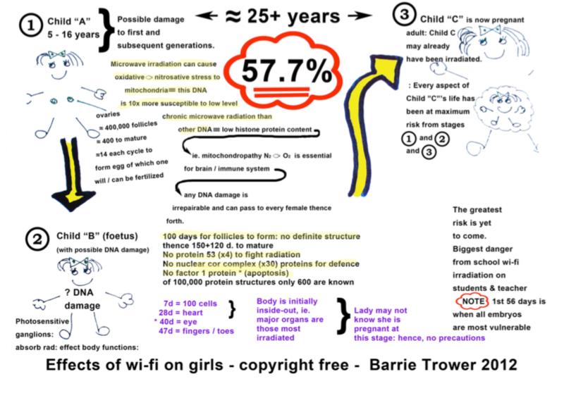 Súbor: Účinky wi-fi na dievčatá - Barrie Trower.png