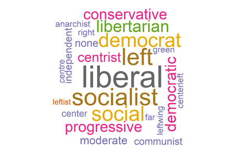 Political identity wordcloud.png