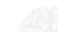 Brain watermark light.png