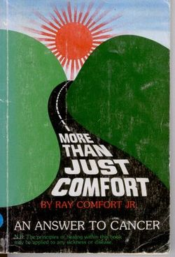 More Than Just Comfort.jpg