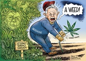 Ben garrison-sessions weed.jpg
