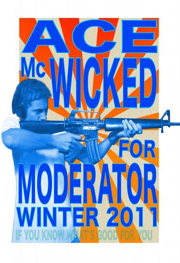 Ace for mod Winter 2011 800x122.jpg