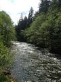 Salmon River OR.jpg